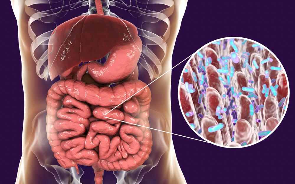 Troubles digestifs ? - Sophie Dimanche-Lahaye, diététicienne et micronutritionniste à Annecy
